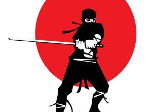 Wojownicy ninja