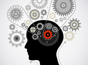 Mózg czyli superkomputer w naszej głowie