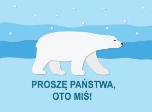 ZIMOWE CIEKAWOSTKI Miś polarny- biały zabójca, czy miła zabawka?