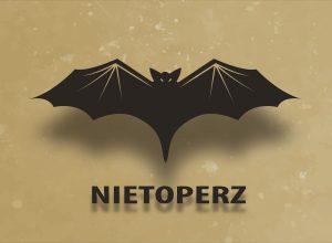 Nietoperz- Wampir czy niezasłużona opinia?