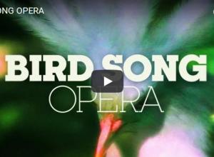 Opera na wesoło